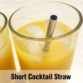 Short Cocktail Straw